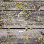 Blog - Improve leads