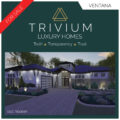 Graphic Design: Trivium Luxury Homes