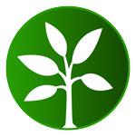 Logo Design: Plant Paradise